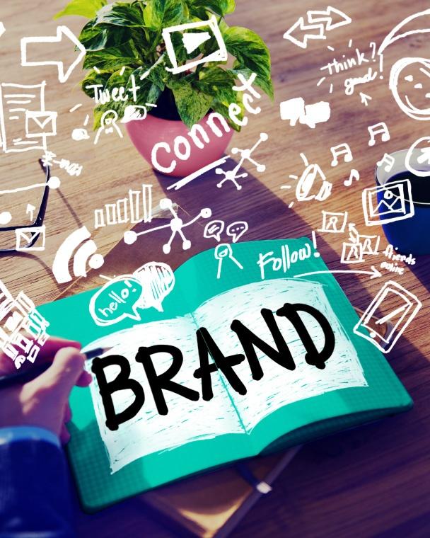 Study The Brand